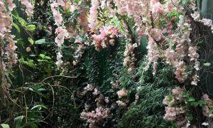 41 Beau Fleurs Du Jardin
