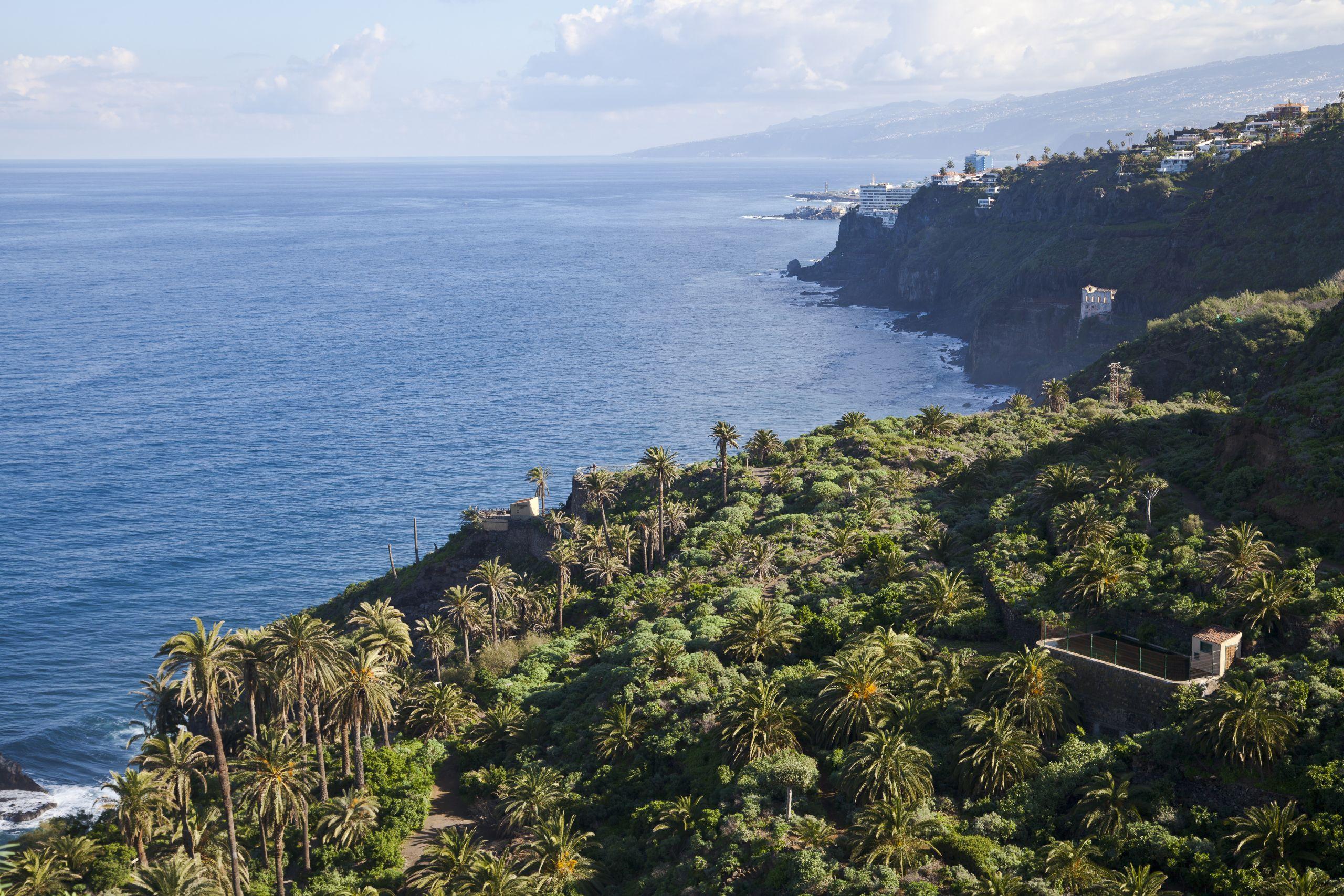 Vista desde el Mirador de San Pedro Los Realejos Tenerife España 2012 12 13 DD 10