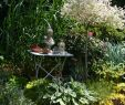 Idee Amenagement Jardin Élégant Juin Results From 16