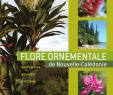 Idee Amenagement Jardin Unique Pdf Flore ornementale De Nouvelle Calédonie Horticulture