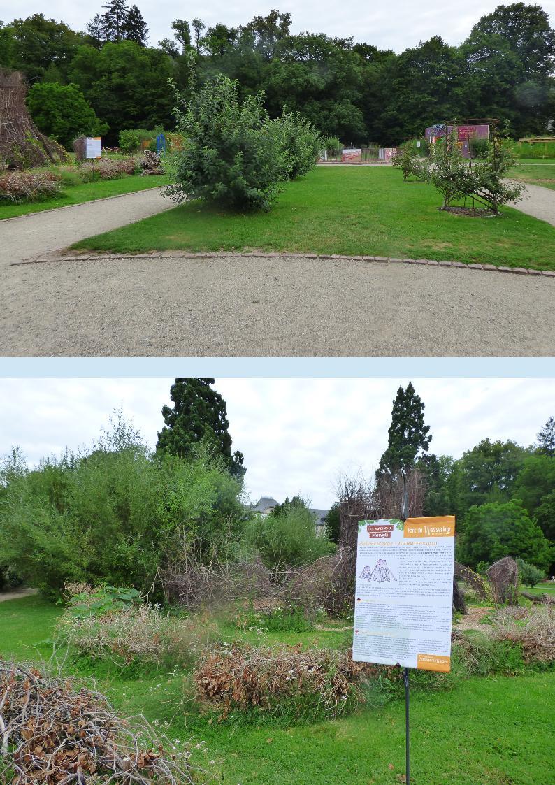 Idee Jardin Paysagiste Inspirant Les Jardins De Mowgli Au Parc De Wesserling Dans Ma Bonjotte Of 69 Frais Idee Jardin Paysagiste