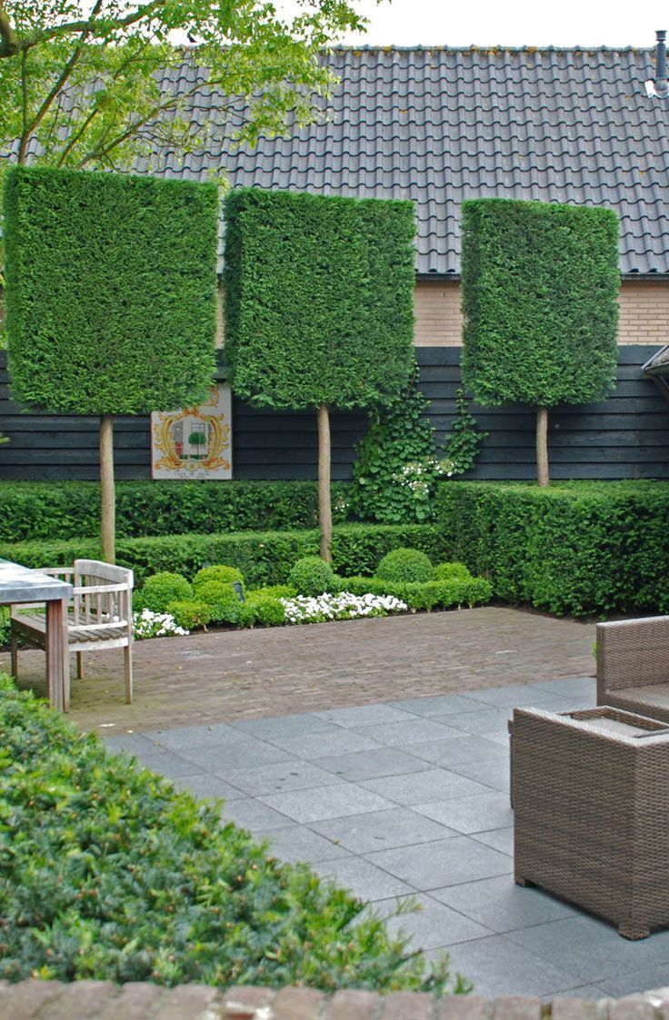 Jardin Amenagement Charmant Garden Screening Ideas Locate Inspiration for Contemporary Of 43 Beau Jardin Amenagement
