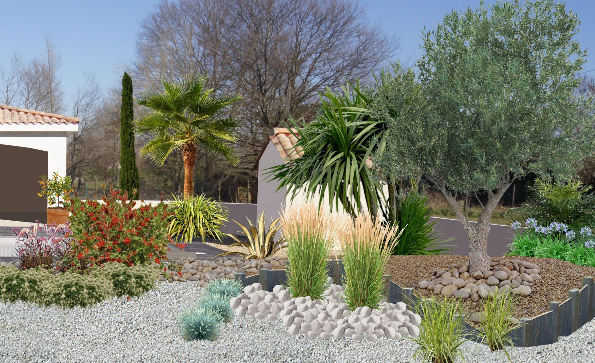 plantation de graminées avec des galets devant une piscine