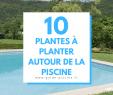 Jardin Autour Piscine Luxe épinglé Sur Autour De La Piscine