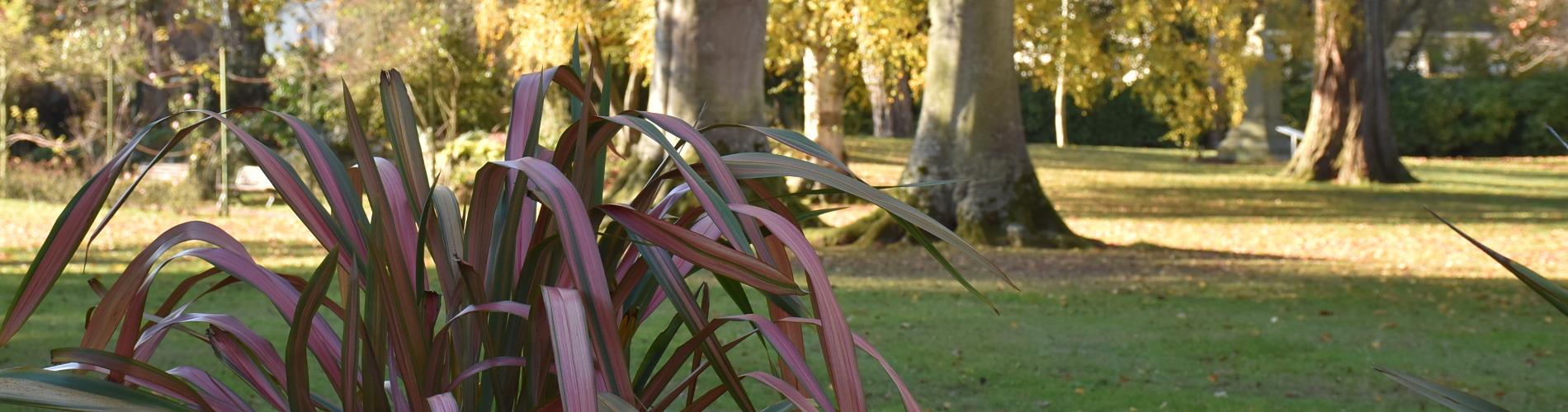 Jardin Botanique Bayeux Luxe Parcs Jardins Et Balades