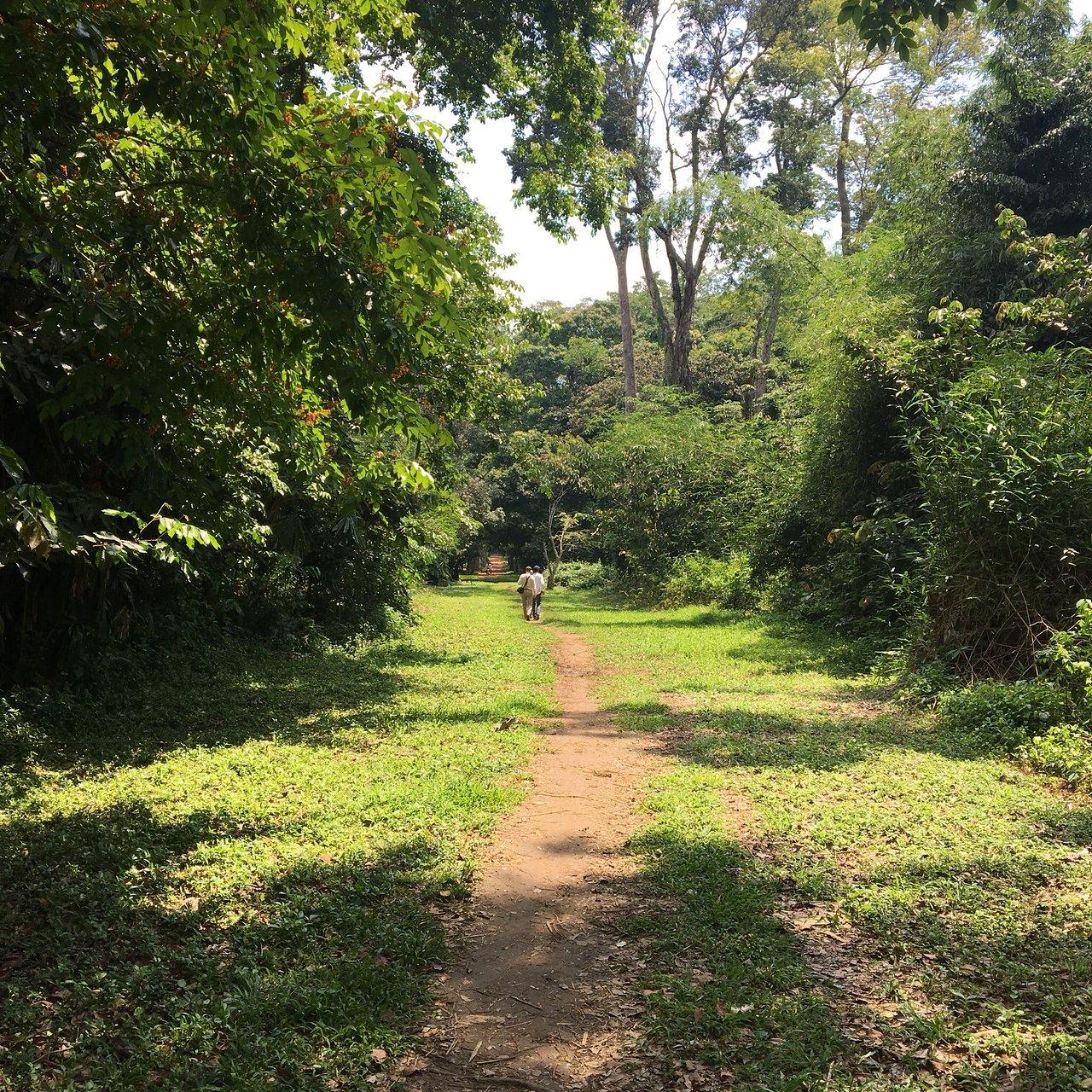 Jardin Botanique Best Of Jardin Botanique De Kisantu 2020 All You Need to Know