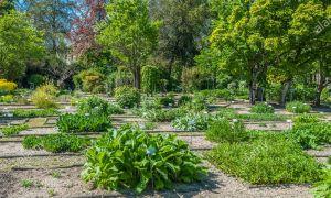 88 Luxe Jardin Botanique Bordeaux