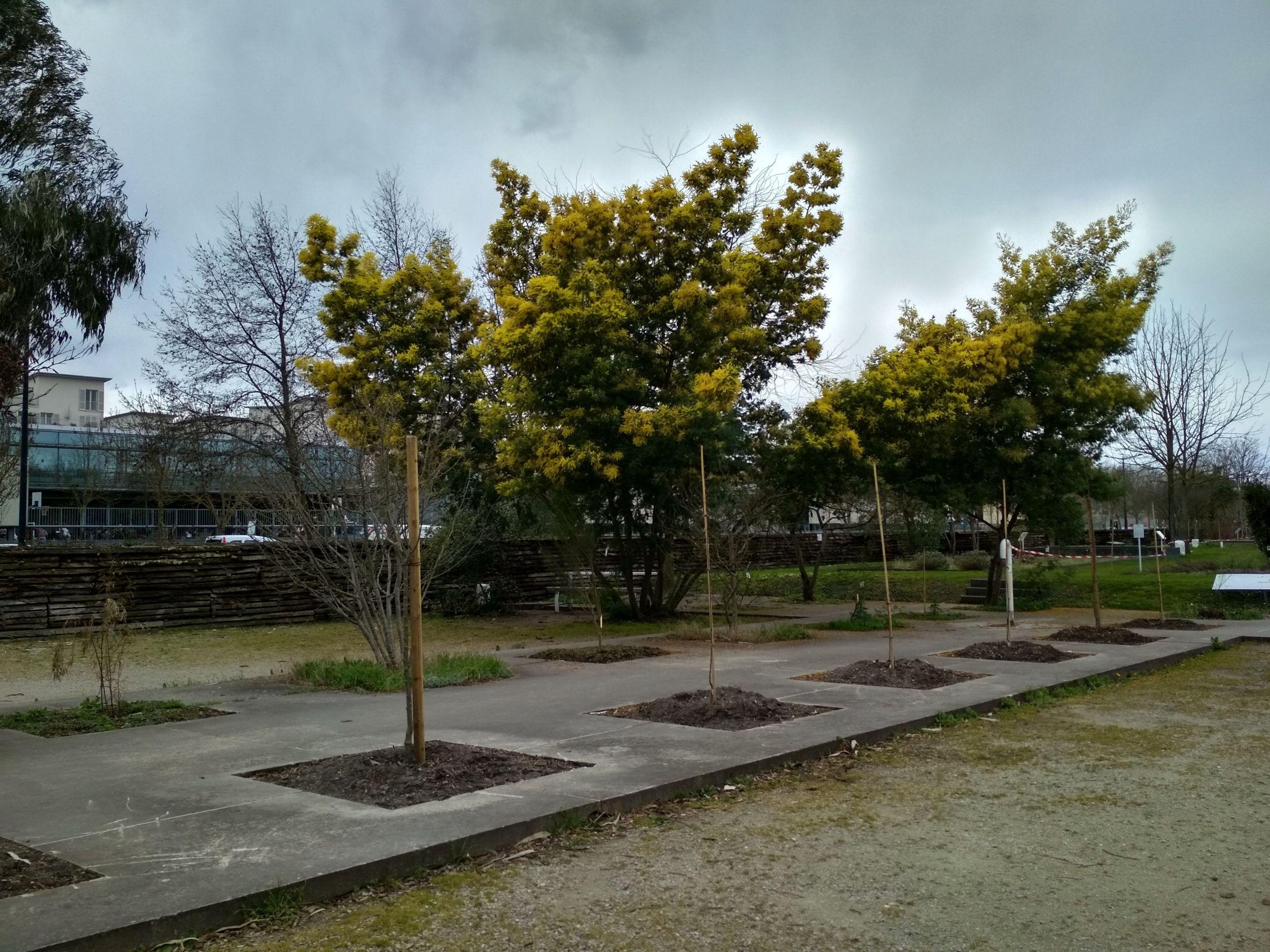 jardin botanique bordeaux all year
