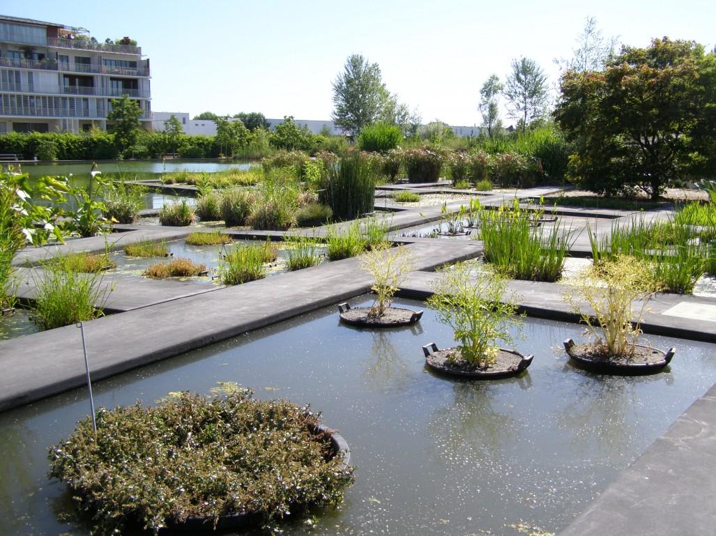 jardin public bordeaux awesome jardin botanique bordeaux m? ?nu aiast pinterest of jardin public bordeaux