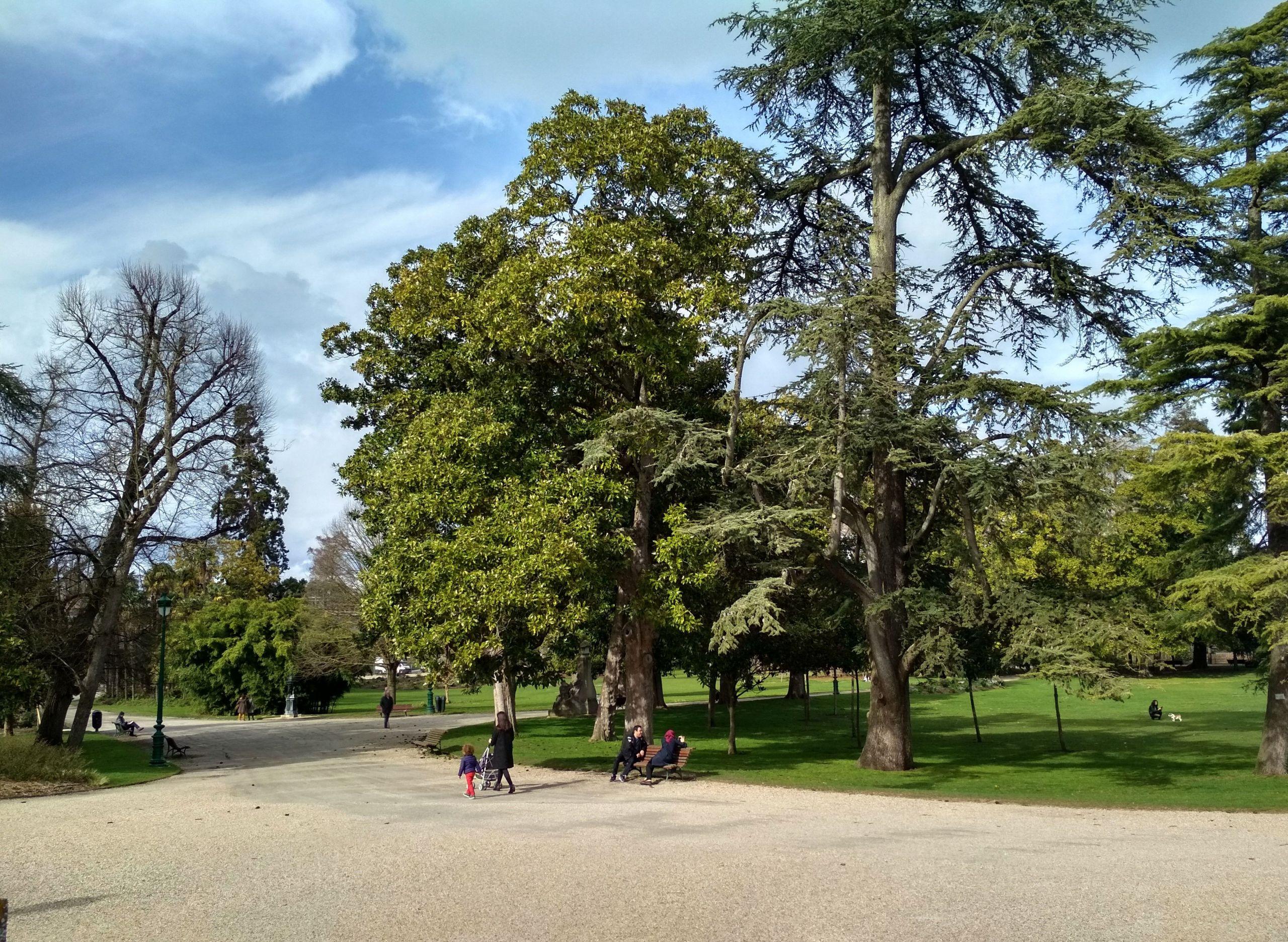 jardin public bordeaux all year