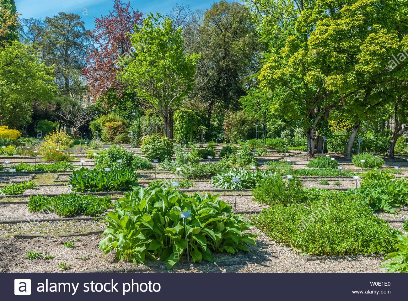 france gironde bordeaux botanical garden of the jardin public W0E1E0