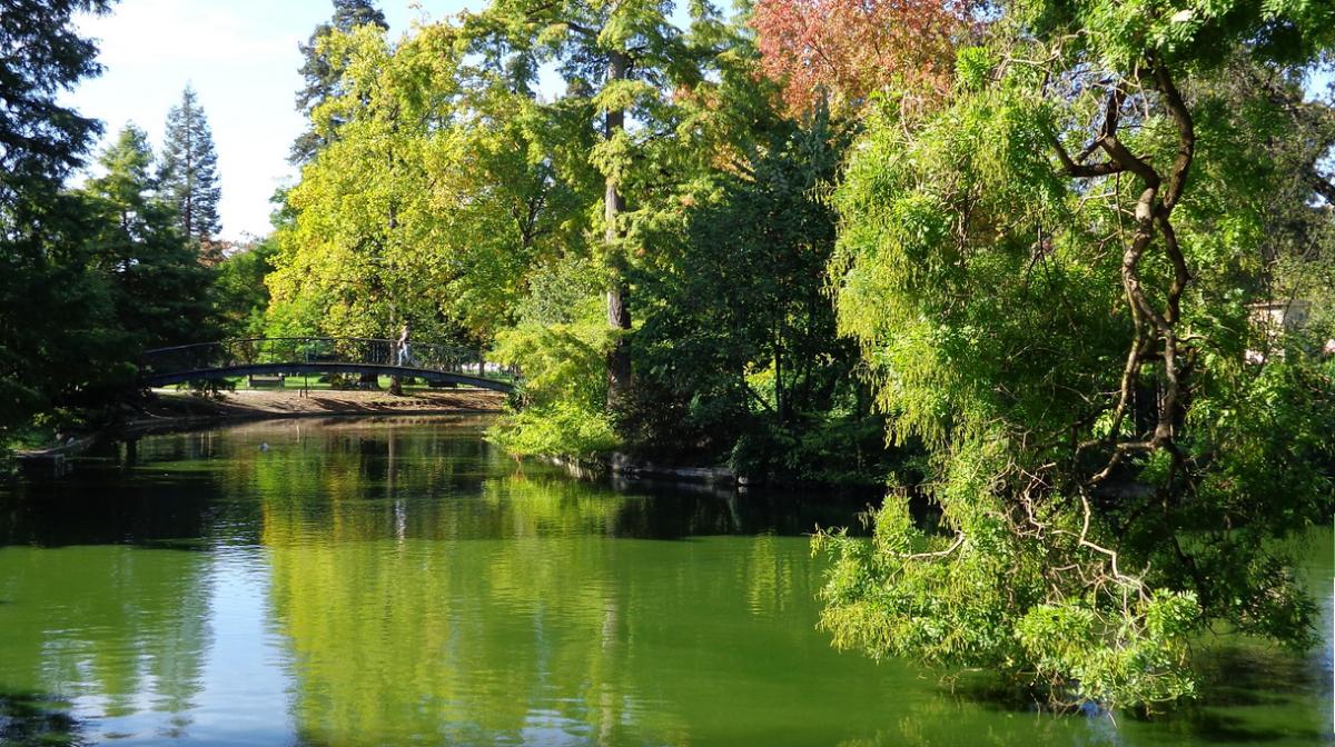 jardin public bordeaux centre bordeaux centre