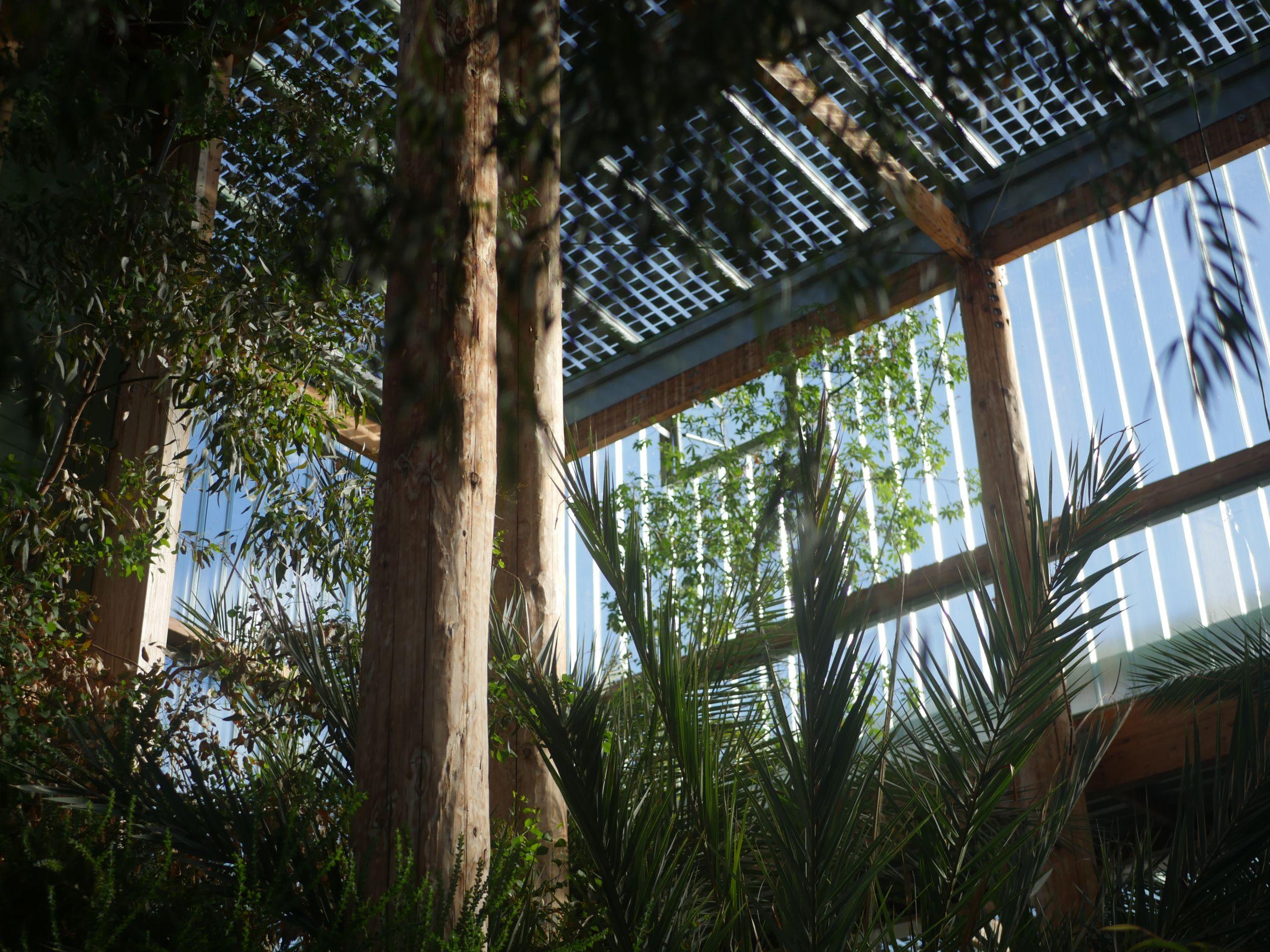 Jardin botanique Serres Bordeaux batiment photo Sara Soulignac