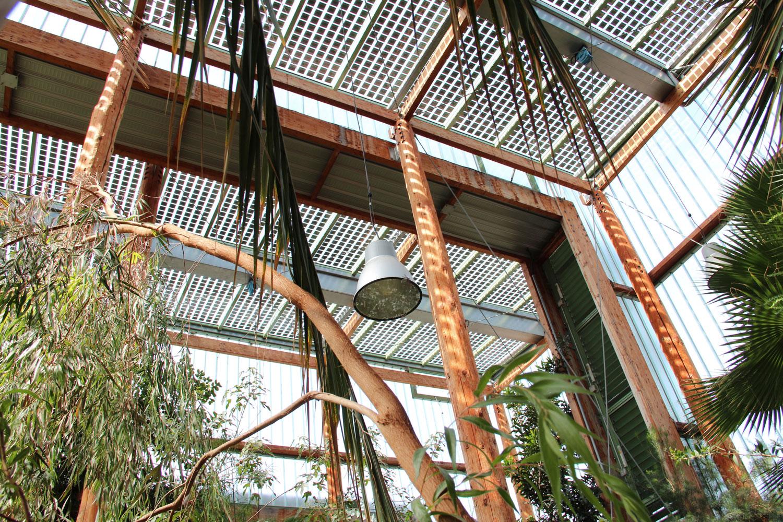 Jardin botanique Bordeaux serre architecture photo Benoit Hermet