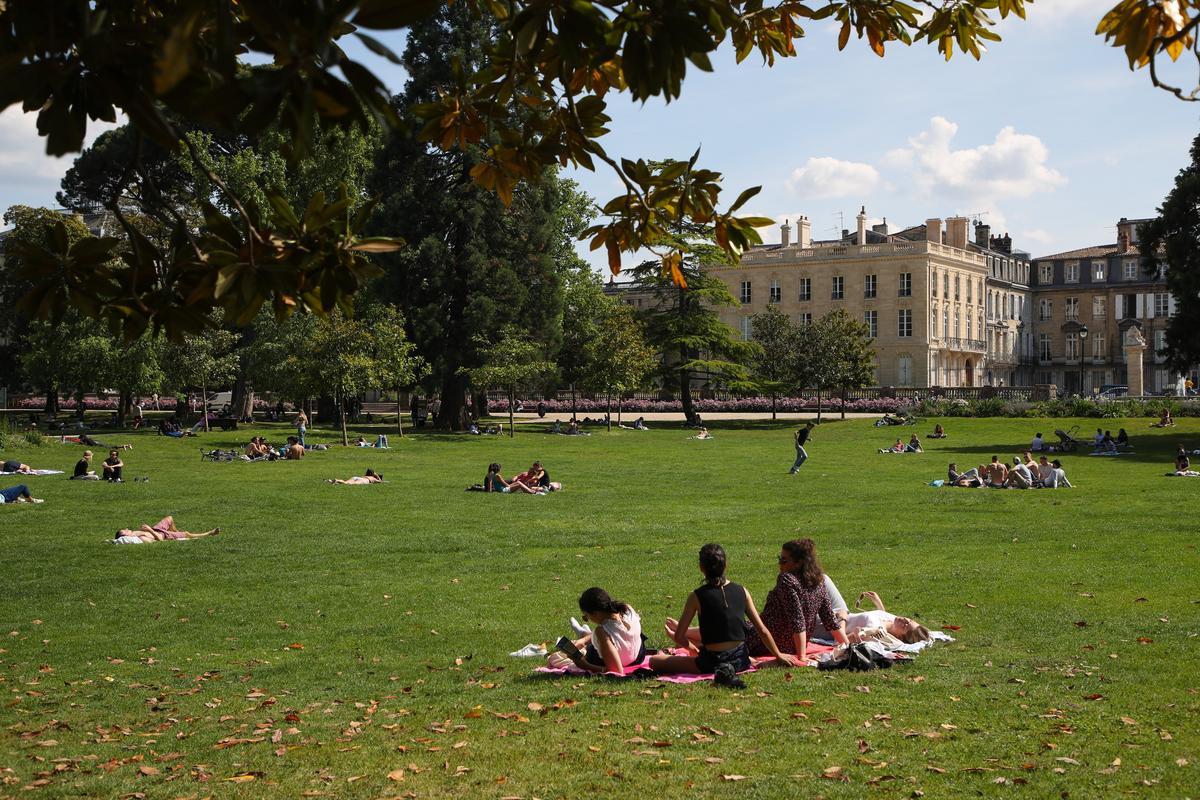 Jardin Botanique Bordeaux Unique Parcs Et Jardins Contemporains En France Book Depository Of 64 Luxe Jardin Botanique Bordeaux