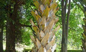 84 Beau Jardin Botanique