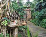 52 Élégant Jardin Botanique De Deshaies