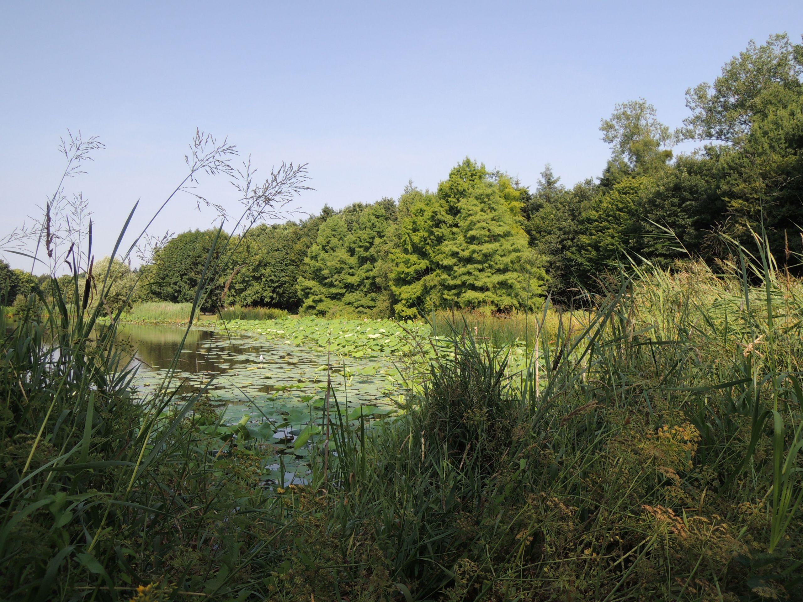 Jardin Botanique Élégant Rennes Familypedia
