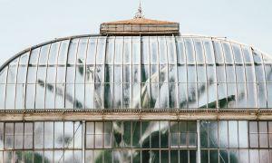 25 Élégant Jardin Botanique Geneve