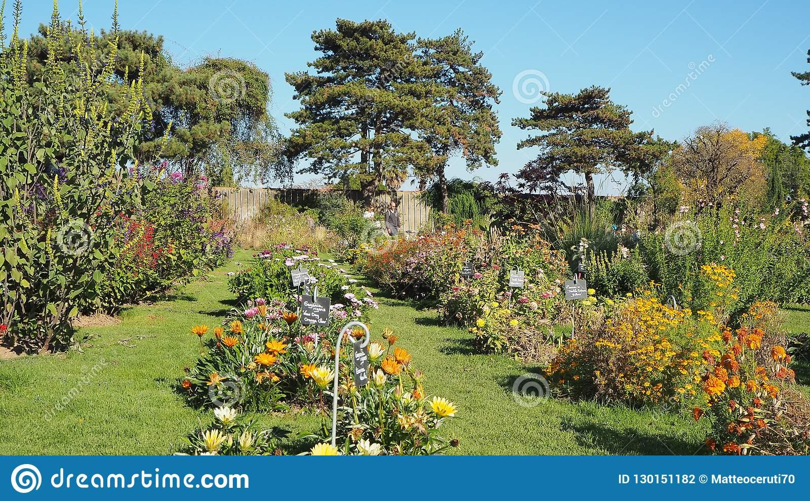 nantes france jardin des plantes de nantes municipal botanical garden city center nantes france jardin des