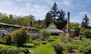 82 Frais Jardin Botanique Strasbourg