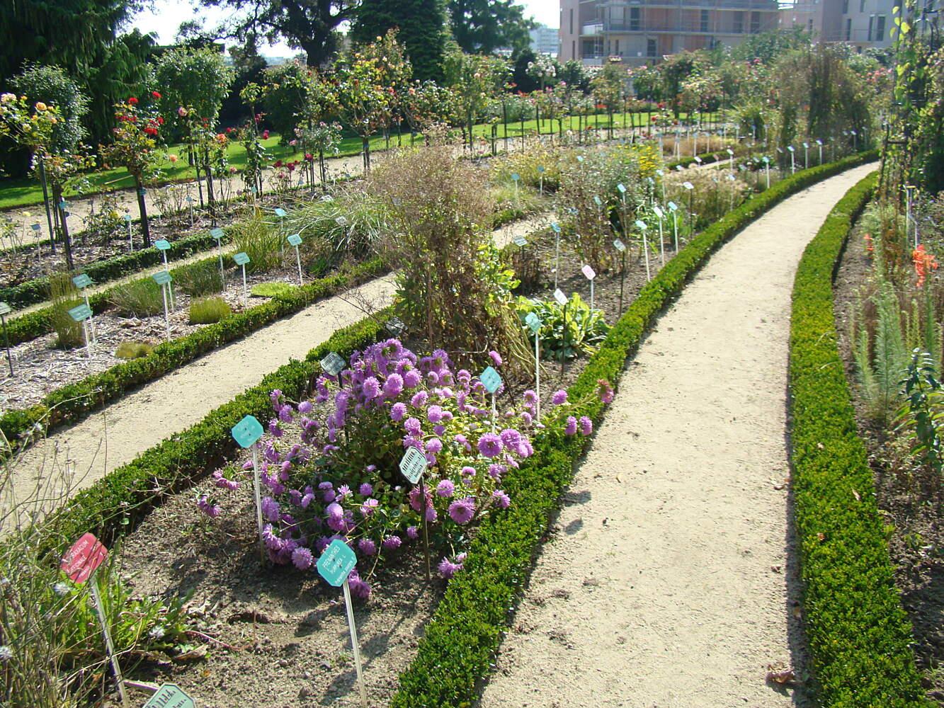 Jardin Botanique Unique Thabor Park – Rennes – tourist attractions Tropter