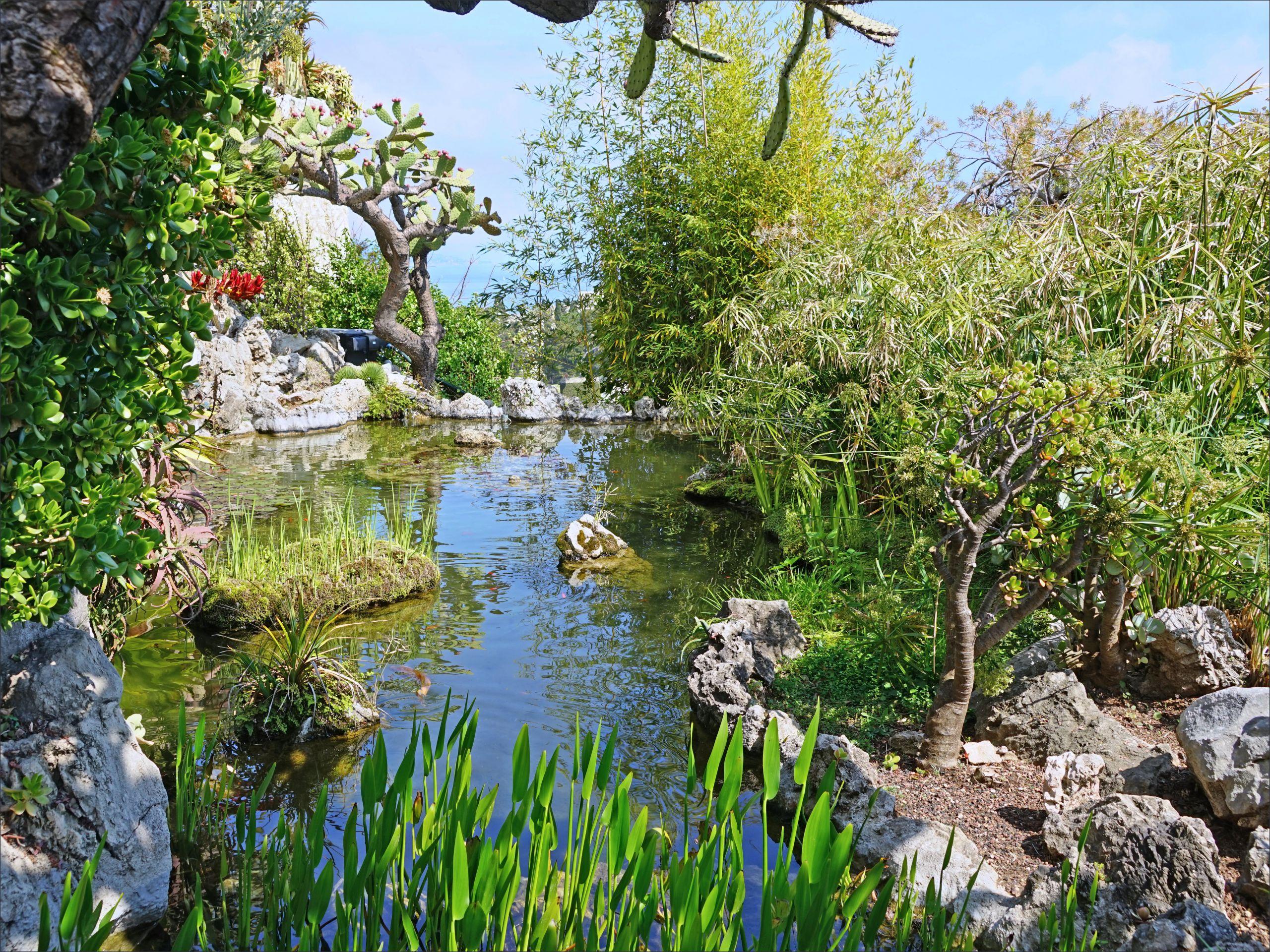 Le jardin exotique de Monaco %