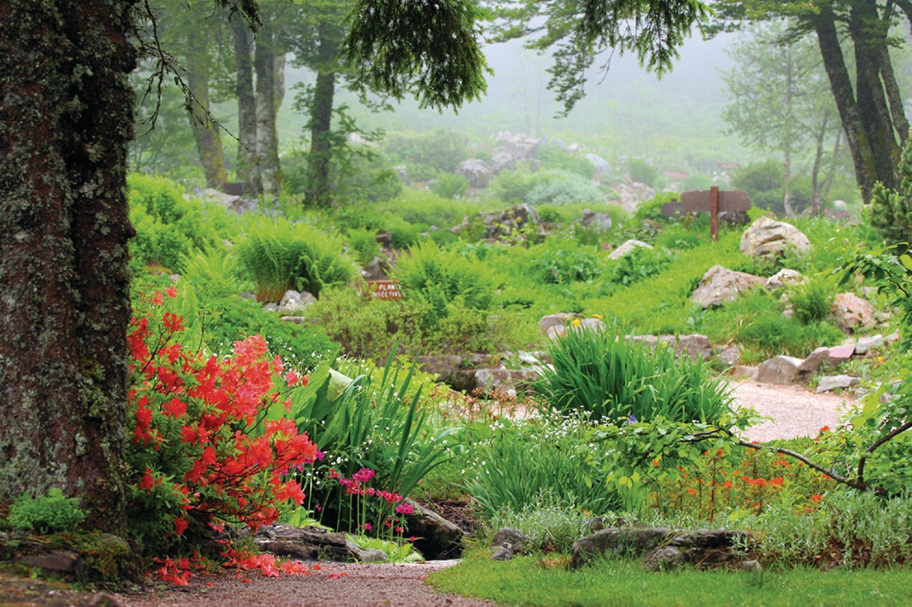xonrupt longemer jardin d altitude du haut chitelet