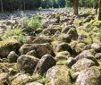 Jardin De Berchigranges Nouveau Granges Sur Vologne 2020 Best Of Granges Sur Vologne