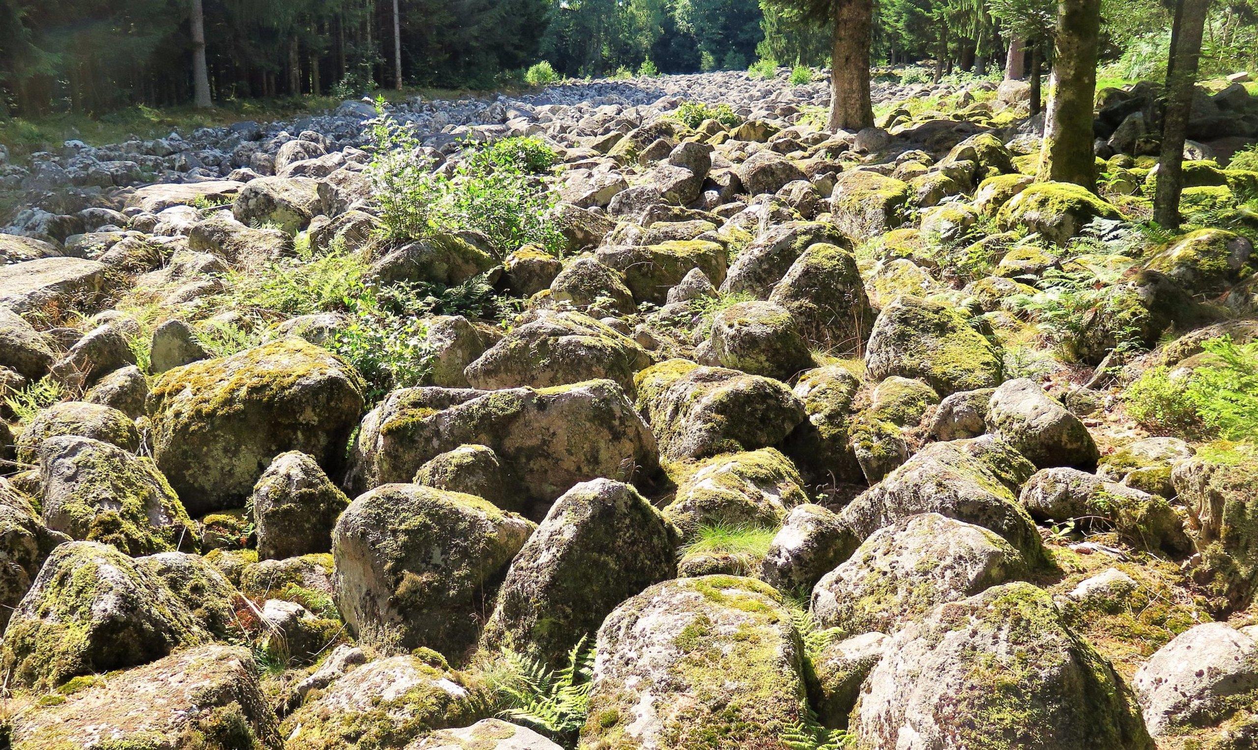le champ de roches a