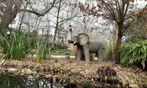 58 Beau Jardin De L Acclimatation
