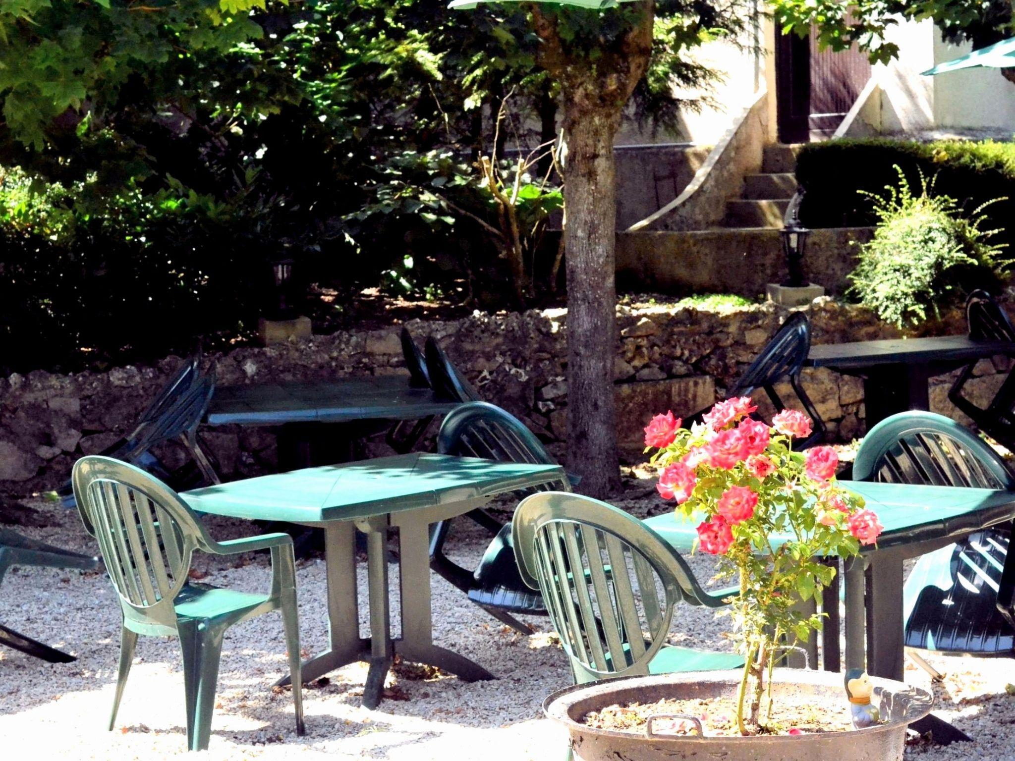 Jardin De Maison Nouveau Anti Fourmis Jardin