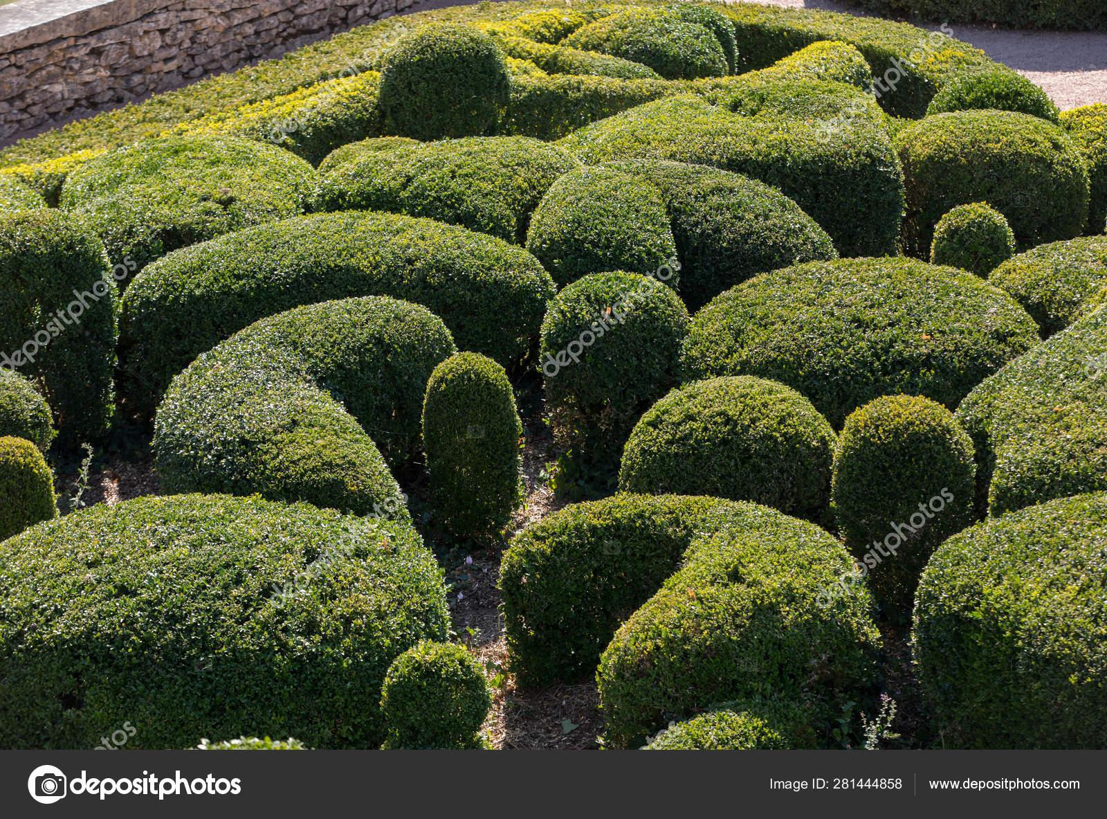 depositphotos stock photo topiary gardens jardins marqueyssac dordogne