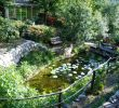 Jardin De Roses Génial the Provence Post Five Gorgeous Provence Gardens to Visit