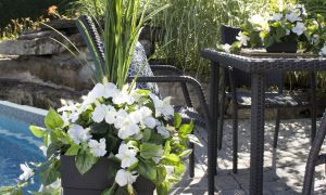 67 Beau Jardin Des Fleurs Bordeaux
