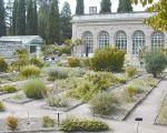 48 Élégant Jardin Des Plantes De Montpellier
