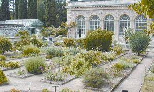91 Élégant Jardin Des Plantes De Montpellier