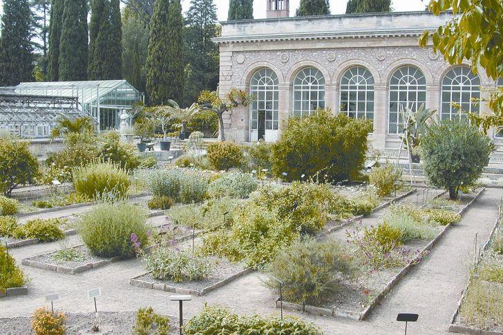 Jardin Des Plantes De Montpellier Inspirant Jardin Des Plantes De Montpellier
