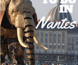 Jardin Des Plantes Lille Génial 6 Awesome Things to Do In Nantes France