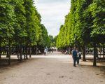 58 Unique Jardin Des Tuileries Metro