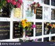 Jardin Du souvenir Pere Lachaise Élégant Pere Lachaise Cemetery Floral Stock S & Pere Lachaise
