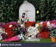 Jardin Du souvenir Pere Lachaise Inspirant Pere Lachaise Cemetery Floral Stock S & Pere Lachaise