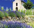 Jardin Du souvenir Pere Lachaise Nouveau France & Italy Brochure 2016 by House Of Travel issuu