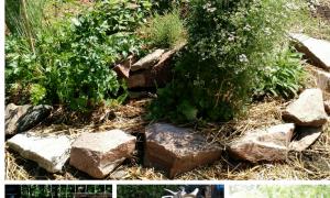 49 Unique Jardin En Permaculture