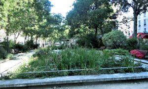 61 Nouveau Jardin En Ville