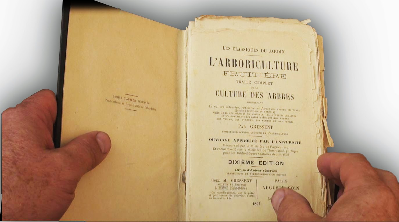 Jardin Encyclopédie Charmant Les Secrets De La Taille Et De La Greffe Des Arbres