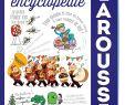 Jardin Encyclopédie Luxe Amazon Ma Premi¨re Encyclopé Larousse Cambournac