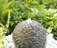 Jardin Exotique Monaco Best Of Pin On Conception De Jardin