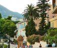 Jardin Exotique Monaco Charmant 41 Best Monaco Monte Carlo Images