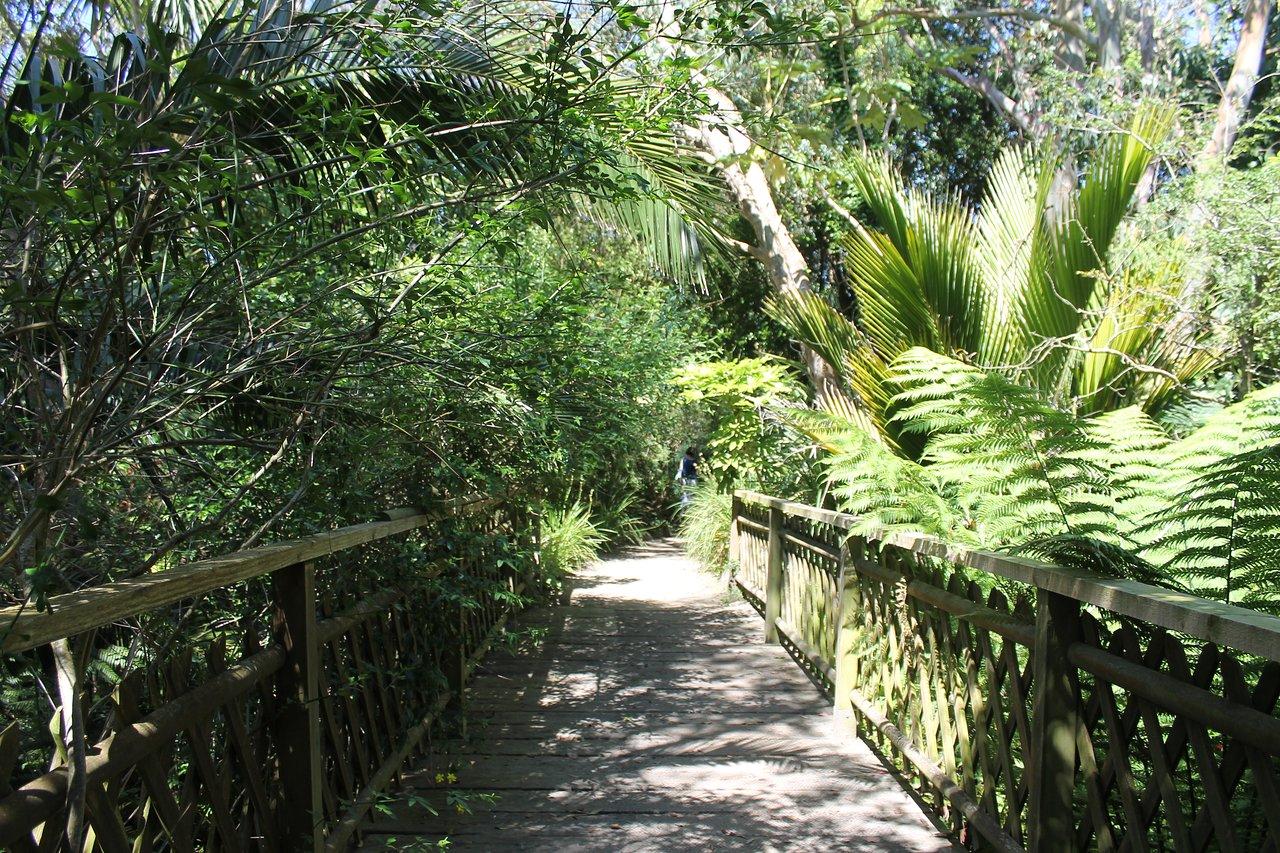 jardin exotique et botanique